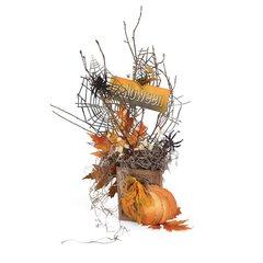 Halloween Pumpkin and Spiderwebs Decor