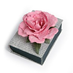 Peony Mini Book by Susan Tierney-Cockburn