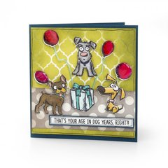Age in Dog Year's Card