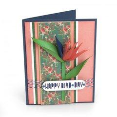 Happy Bird-Day Card