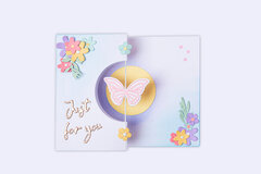 Butterfly Spinner Card