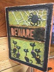 Beware Spider