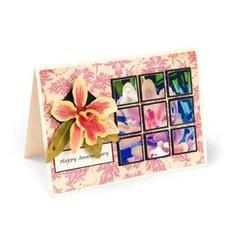 Happy Anniversary Cattleya Card by  Susan Tierney-Cockburn
