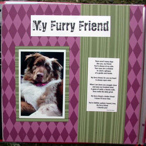 Brock scrapbook- furry friend pg 1