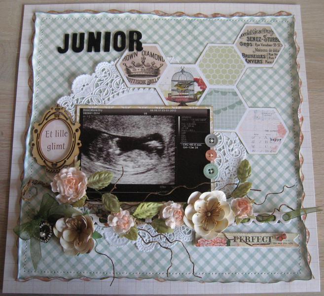 Junior  The first Glimse