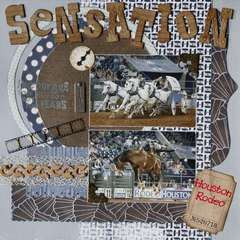 Sensation (Houston Rodeo 2009)