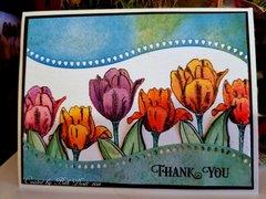 Blooming Garden Tulip Thank You