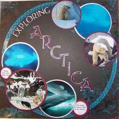 Exploring Arctica