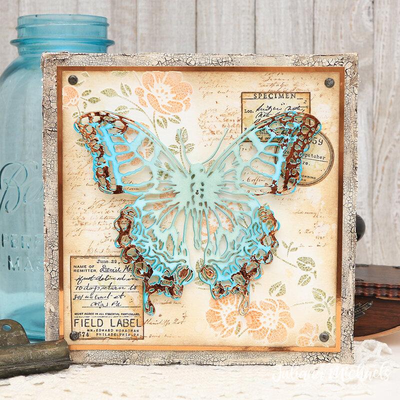 Butterfly Specimen Canvas
