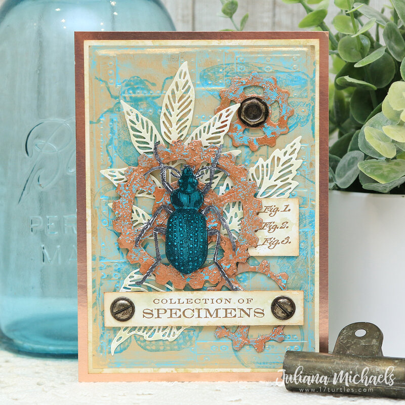 Specimens Card *Tim Holtz Salvage Patina Distress*