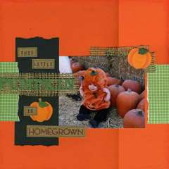 This Little Pumpkin is Homegrown