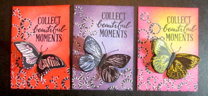 Collect Beautiful Moments/Butterfly