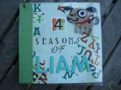 Cover for Mini-Album: 4 Seasons of Liam