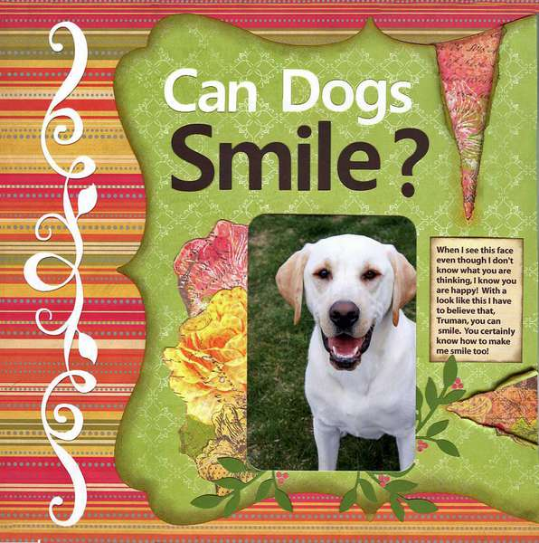 Can Dogs Smile?