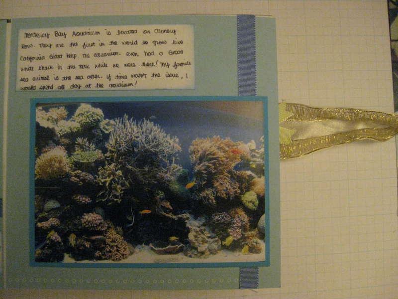 Marine Life (2)