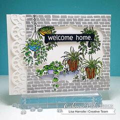 Welcome Home Window Plants