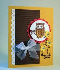 Owl Branch Thank You Card