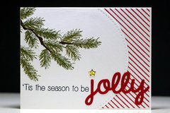 Jolly Pine Branch