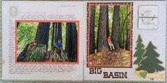 hiking in Big Basin