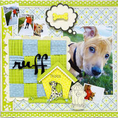 The Fifi & Fido Collection
