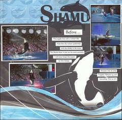 Shamu before...