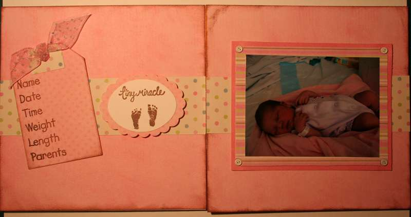 Page 1 & 2 6 x 6 Chipboard Baby book