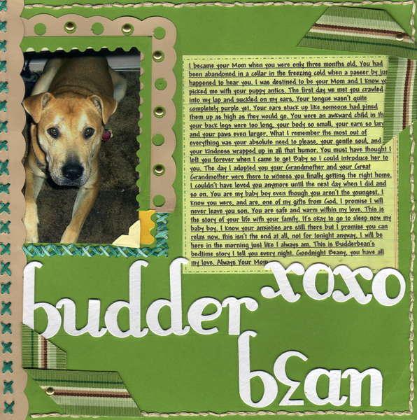 Budder Bean Bedtime Stories