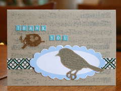 bird thank you