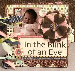 In the Blink of an Eye by Allyson Meinholz
