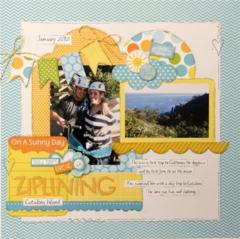 Ziplining by Julie Johnson