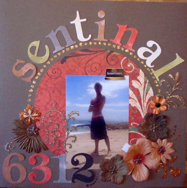 Sentinal 6312