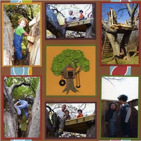 A Treehouse for Boys by Boys (2)