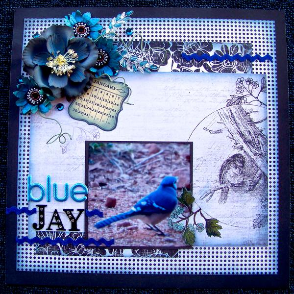 Blue Jay ~*~Nuts About Sketches~*~
