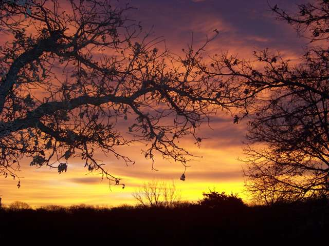 Sunrise 12-20