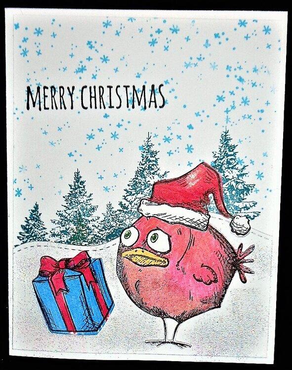 Crazy Birds - Christmas 2019
