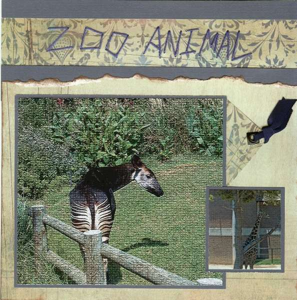 Zoo Animal (Page 1)