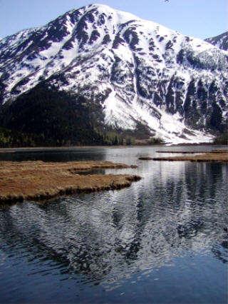 Tern Lake