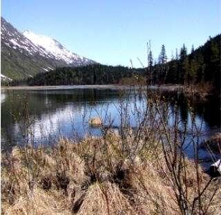 Tern Lake, Alaska