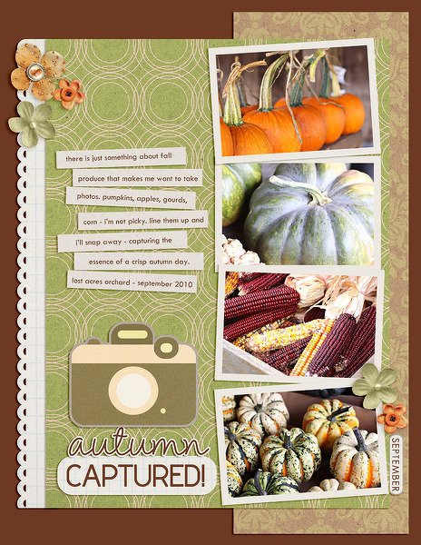 autumn captured