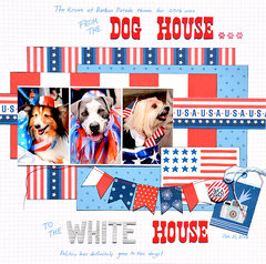 From The Dog House To The White House