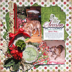 Lessons Learned from our Dog  & cardstock rose tutorial
