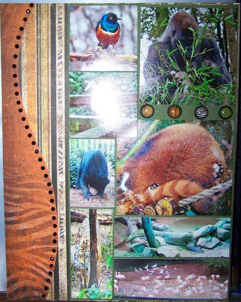 Atlanta Zoo Page 3