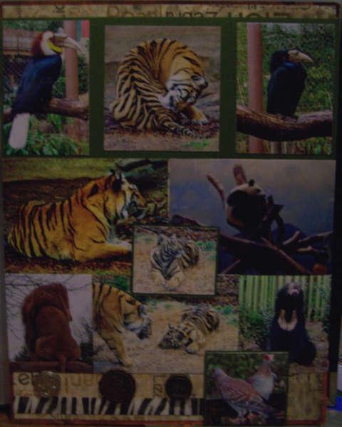 Atlanta Zoo Page 4