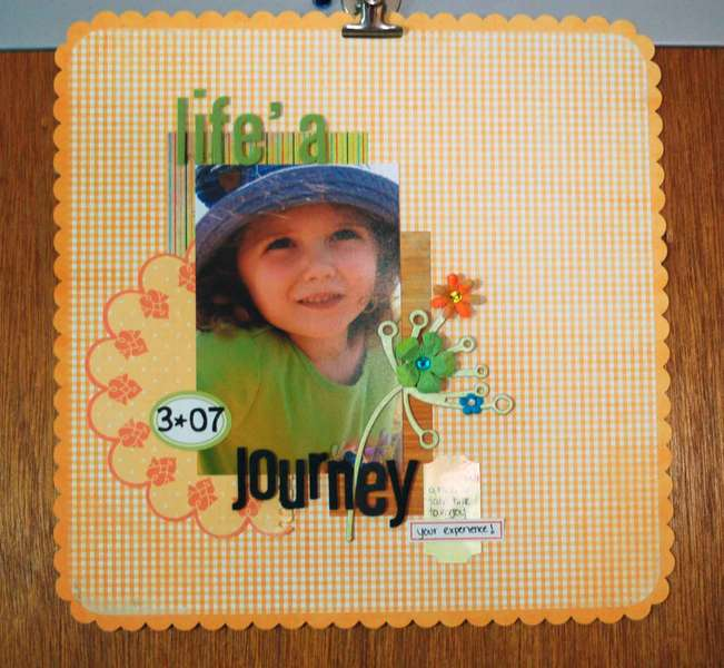 Life's a Journey***Pink Paislee