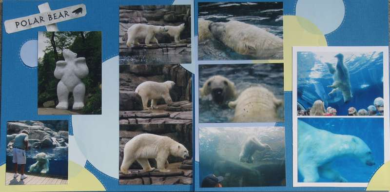 New Polar Bear Exhibit