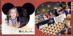 Reflections - Walt Disney World