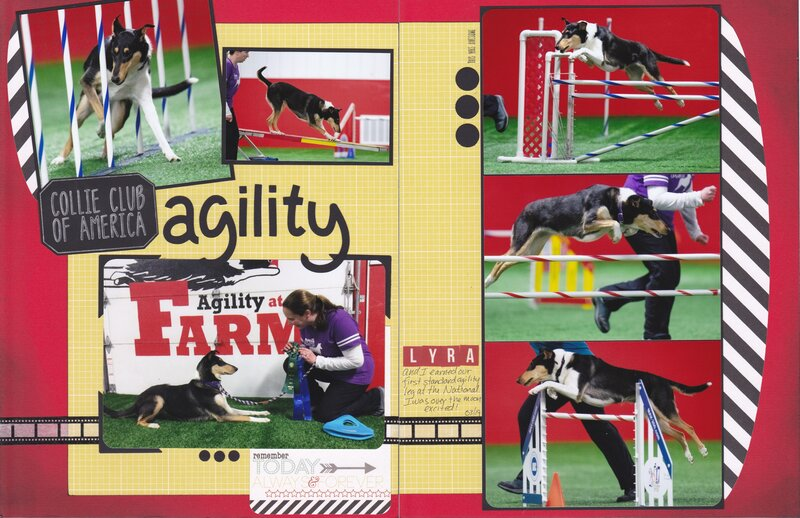 Vol 20 Pg23-24 CCA National Agility