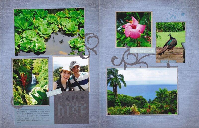 Vol 19 Pg13-14 Maui Trip '16 #4