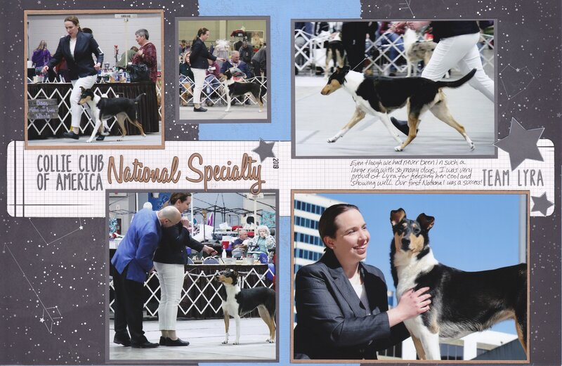 Vol 20 Pg25-26 CCA National Specialty