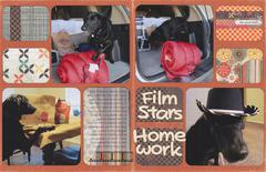 Vol 14 Pg 19-20 Film Stars Homework